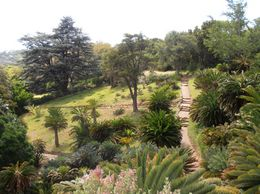 Kirstenbosch Botanical Gardens, JC - April 2012