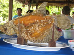 Photo of Ho Chi Minh City Mekong Delta Discovery Small Group Adventure Tour from Ho Chi Minh City Lunch