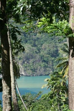 Photo of St Lucia St Lucia Bike and Hike Half-Day Tour from the North Island PLANTATION2