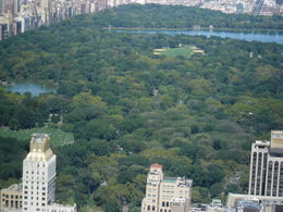Photo of New York City Top of the Rock Observation Deck, New York Central Park as viewed by a bird