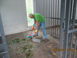 That's me in the photo. How many people can say they have cleaned up panda poop! , ed m - October 2014