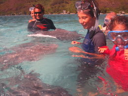 Photo of Moorea Moorea Snorkeling Safari Moorea Snorkeling Safari