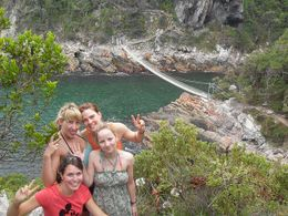 Photo of Cape Town 4-Day Garden Route Tour from Cape Town Tsitsikamma Forest