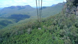Photo of Sydney Small-Group Blue Mountains Day Trip from Sydney with River Cruise View from the descending cable car