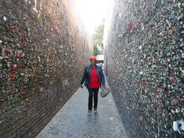 Photo of   CHEWING GUM ALLEY