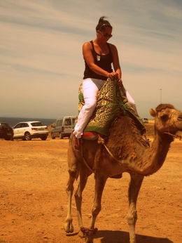 Riding a camel! , cinthya s - June 2012