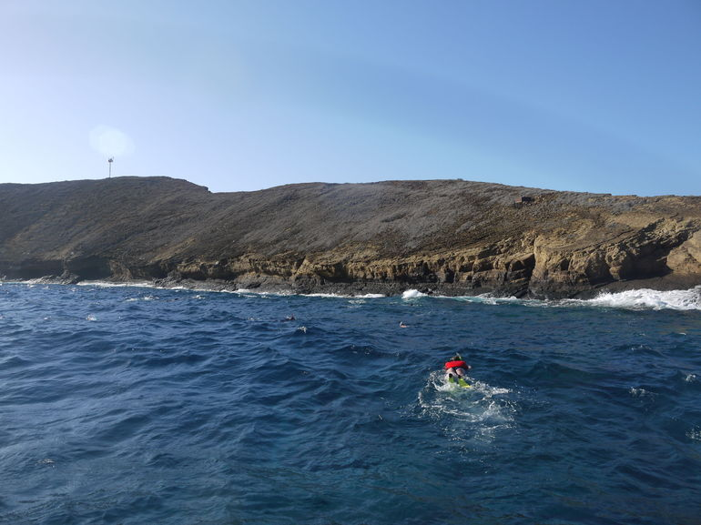 Small-Group Molokini Snorkel and Green Sea Turtle Adventure from Maui - Maui