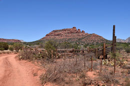 Photo of Sedona & Flagstaff Diamondback Gulch Jeep Tour Stopping point