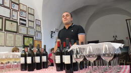 Photo of Rome Frascati Wine Tasting Tour from Rome Wine Tasting Room