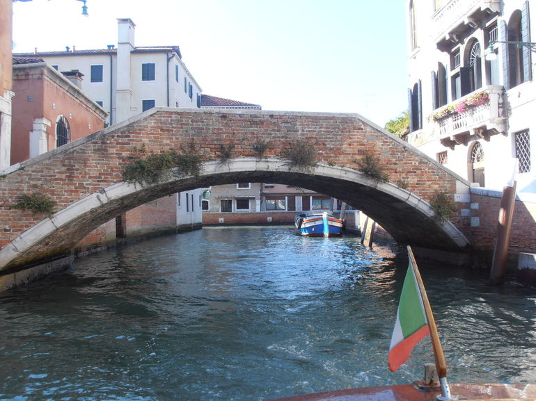 Beautiful Bridges - Venice