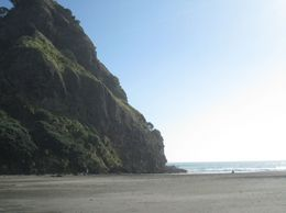 Photo of Auckland Waitakere Ranges Wilderness Experience Eco-Tour from Auckland Black Sand Beach