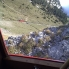 Coming down on world's steepest cogwheel railway