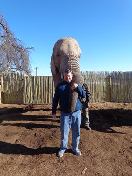 Me with the elephant after my ride , J Kenneth R - June 2015
