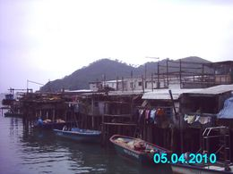 Photo of Hong Kong Lantau Island and Giant Buddha Day Trip from Hong Kong Tai-O fishing village