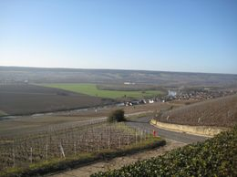 Photo of Paris Champagne Region Day Trip from Paris by Minivan Vineyards Epernay