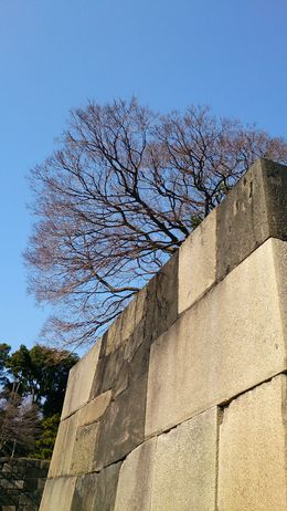 One of the interesting items our guide mentioned were the colors of the blocks making up the walls. The darker ones from Fuji in the south, the lighter ones from queries to the north. , John L - February 2015