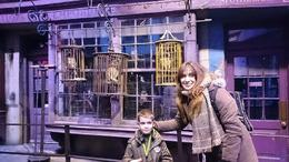 Photo of London Warner Bros. Studio Tour: 'The Making of Harry Potter' with Transport from London CALLEJÓN DIAGÓN