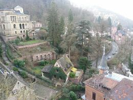 This photo was taken upon arrival at the Heidelberg Castle looking down onto the houses nearby. , Samantha S - February 2014
