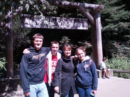 Family trip to Muir Woods , Maura M - August 2013