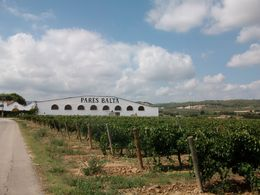 Cava Tour , Sarah D - September 2014