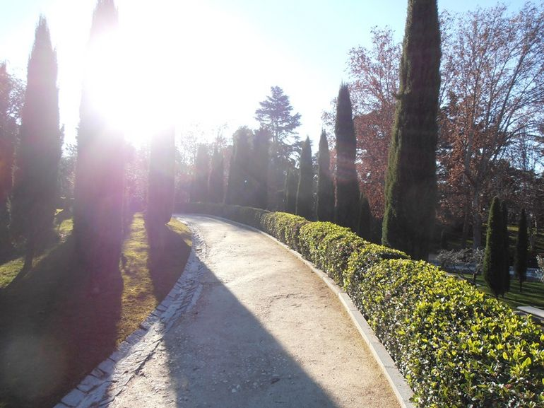 Retiro 6.JPG - Madrid