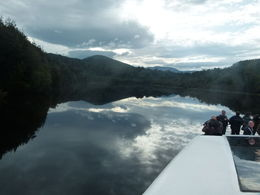 Photo of Tasmania Gordon River Cruise from Strahan Absolute Peaceful