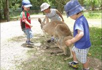 Photo of Noosa & Sunshine Coast Australia Zoo 1-Day or 2-Day Admission Ticket
