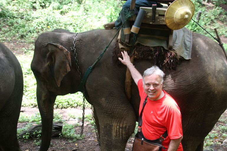 Posing with the elephant! - Chiang Mai