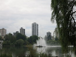 Photo of   Strolling through Stanley Park