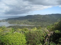 Photo of Auckland Waitakere Ranges Wilderness Experience Eco-Tour from Auckland View of the Ranges
