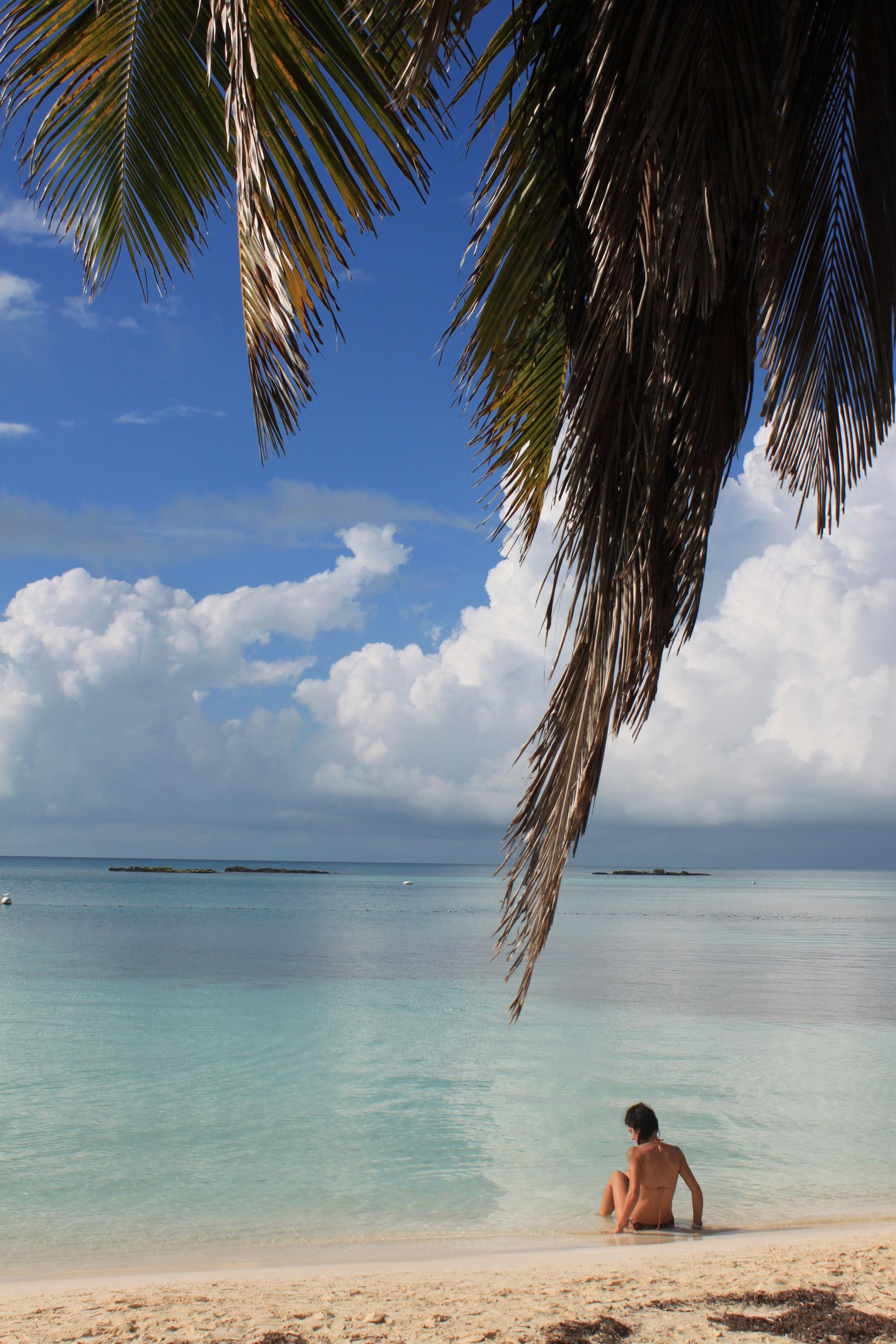 Isla Contoy Day Trip: Snorkeling at Ixlache Reef and Eco-Paradise Tour