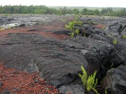 Photo of Oahu Big Island Day Trip: Volcanoes National Park from Oahu Black beach made by lava