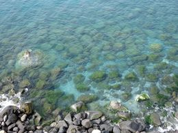 Clear blue water , Beth W - April 2016