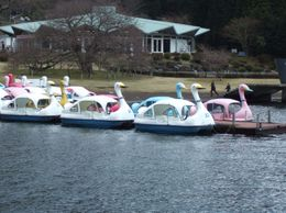 Paddle boats on lake Ashi, Shoo R - April 2009