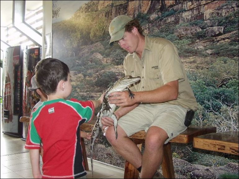 Meeting a crocodile, under the watchful eye of a trainer.