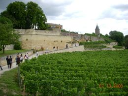 Photo of Bordeaux Bordeaux Vineyards Wine Tasting Half-Day Trip Clos La Madeline