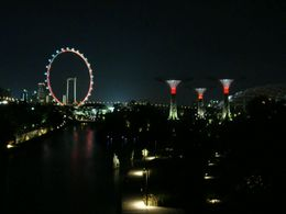 Singapore Flyer and Gardens by the Bay at night, Leah - November 2012