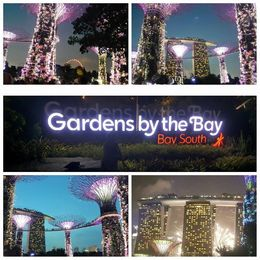 Visit to garden by Bay , Zahid N - July 2015