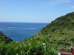 Photo of Florence Cinque Terre Hiking Day Trip from Florence Gorgeous Mediterranean