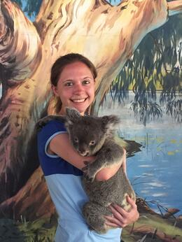 Photo of Cairns & the Tropical North Cairns Tropical Zoo Wildlife Encounter Holding a Koala