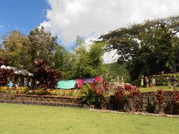 Photo of St Kitts St Kitts Shore Excursion: Panoramic Tour with Optional Brimstone Hill Fortress Visit Romney Manor