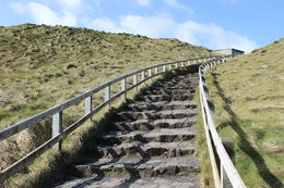 Photo of Dublin Giant's Causeway Day Trip from Dublin Stairs