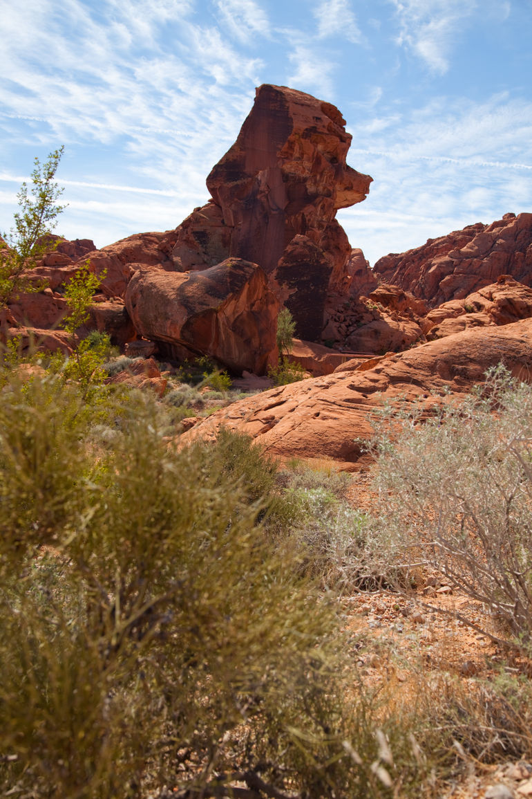 Valley of fire -The dog - Las Vegas