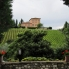 Photo of Florence Vespa Small Group Day Trip to the Chianti Wine Region Vespa Small group day trip to Chianti region