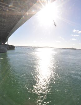 Photo of Auckland Auckland Harbour Bridge Bungy Jump bungy jumping