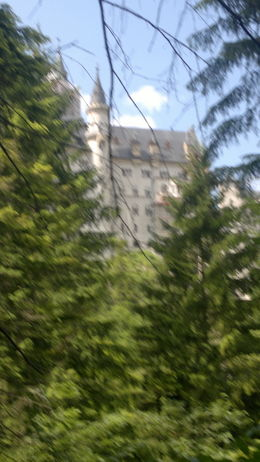 Photo of Munich Neuschwanstein Castle Small Group Day Tour from Munich castle from river