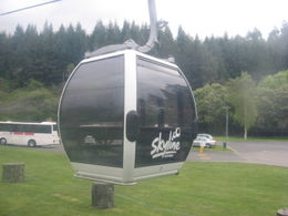 Photo of Rotorua Rotorua Gondola with optional Luge Ride Gondola2