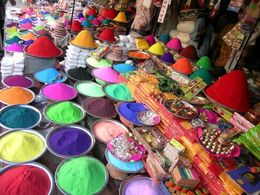 Photo of New Delhi Viator Exclusive: 2-Day Holi Festival Experience in Mathura from Delhi Holi Festival in India