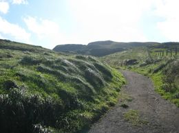 This was taken along the walk to the rope bridge. - September 2007