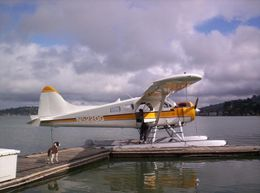 Photo of San Francisco San Francisco Golden Gate Seaplane Tour The Plane